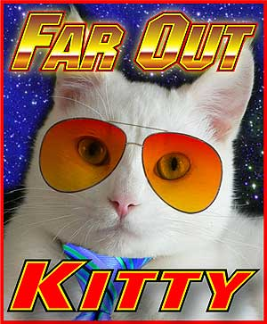 Far Out Radio Kitty