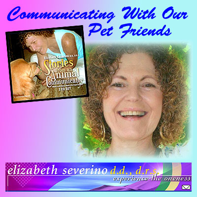 Liz-FB-Pets-Graphic