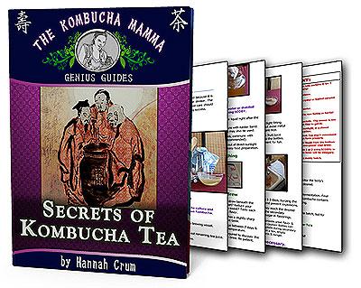 4-Kombucha-Book
