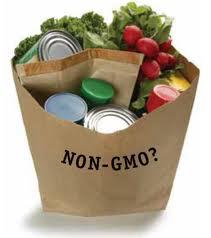 non gmo food