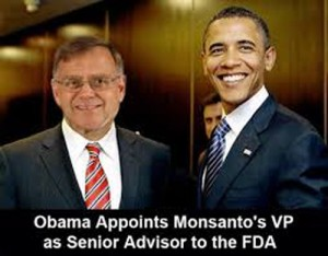 Monsanto in FDA